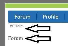 ForumForum.JPG
